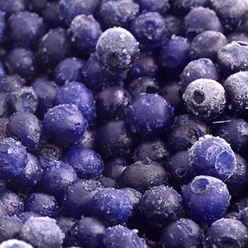 Wild Blueberry – Bilberry
